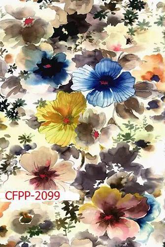 CFPP-2099